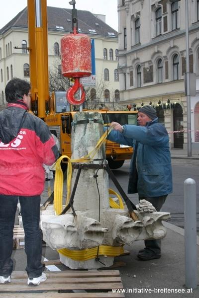 Sicher am Boden: Die Kreuzrose (Foto: Fröschl)